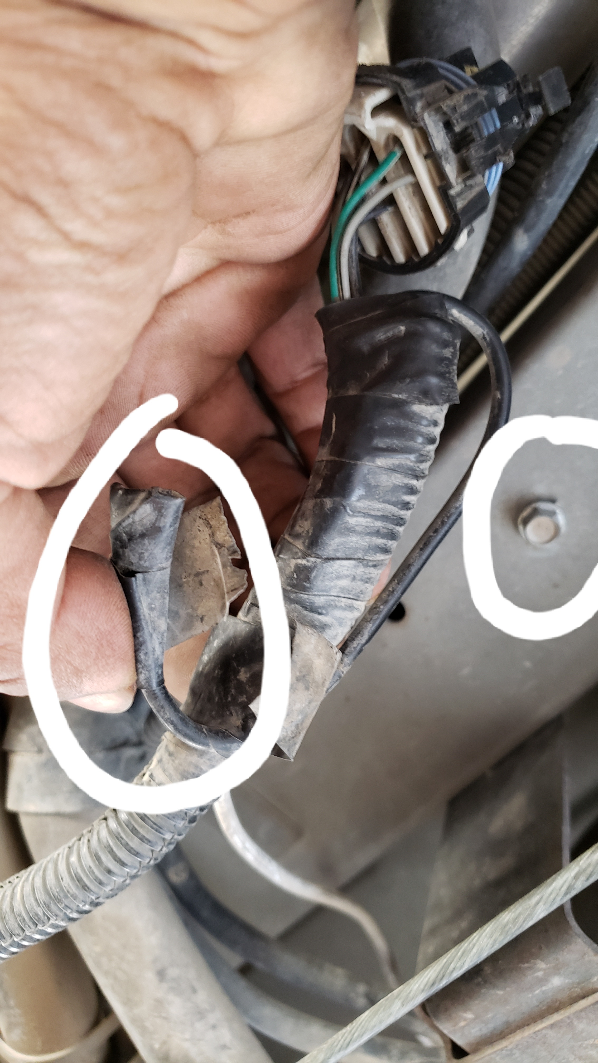 Fuel Pump Connector Ground?