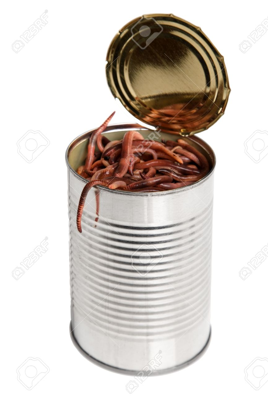 4656346-concept-for-the-idiom-of-a-open-can-of-worms.jpg